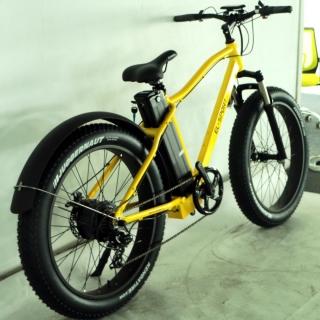 Электровелосипед El-sport bike TDE-03