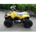 Детский электроквадроцикл El-Sport Children ATV (SLA 36V/12Ah)