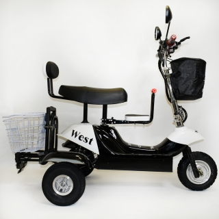 Трехколесный трицикл El-Sport SF 8 Maxi